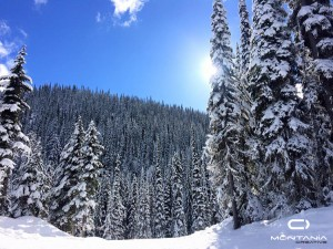 ski-fuera-pista-canada